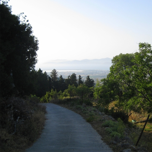 The road to Dikeo